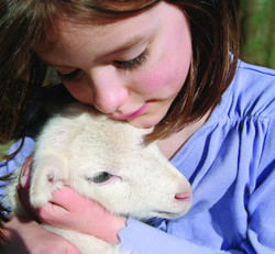 Something cracking going on at the Rarebreeds Centre this Easter